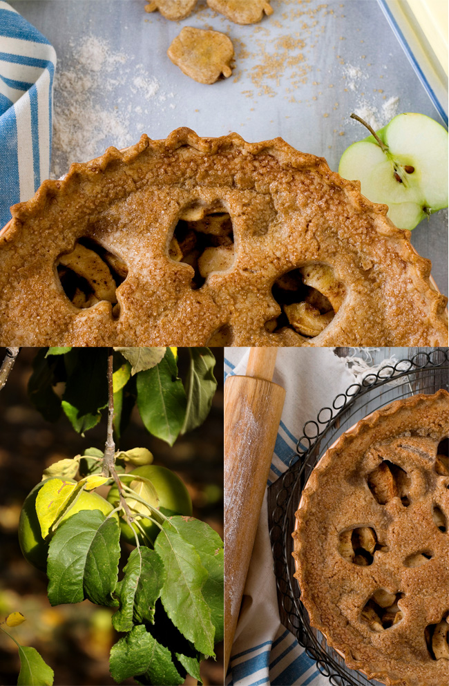 gluten-free double-crust apple pie