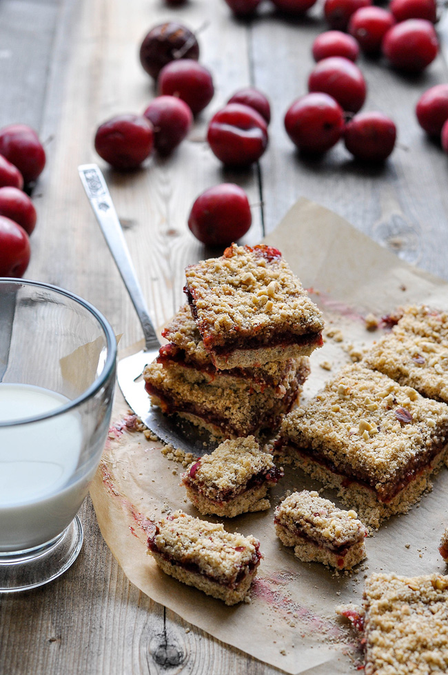 oat and fruit bars